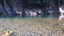 ハウスレポート6|板取川にキャンプに行ってきました!!