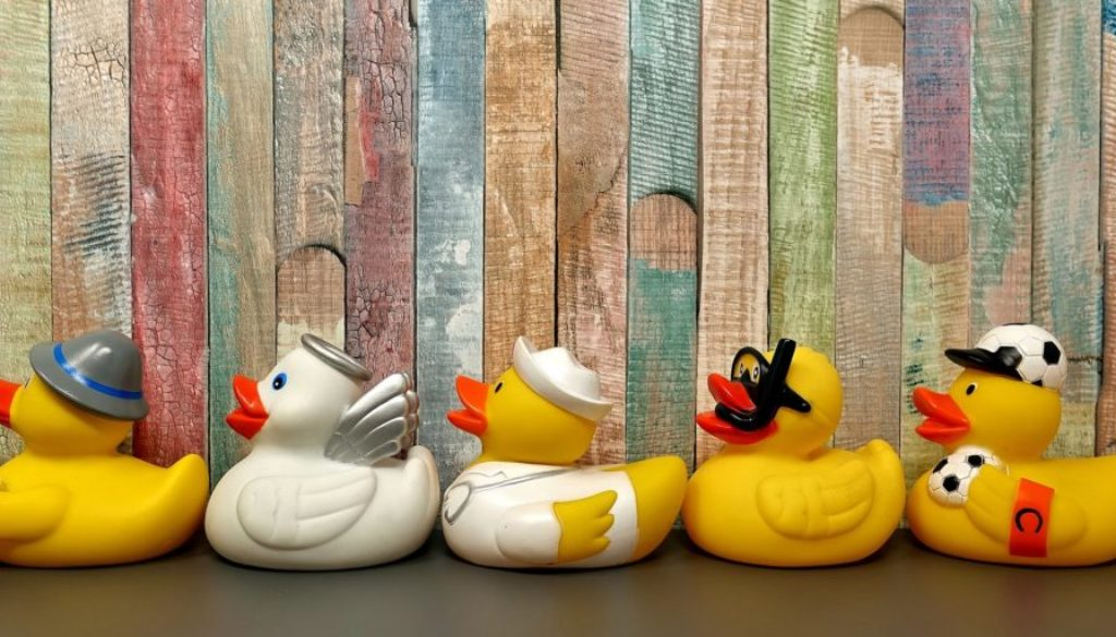 rubber-ducks-3412065_1920
